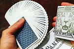 Black Lions Playing Cards Deck Blue Color