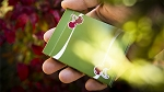 Cherry Casino Fremonts (Sahara Green) Playing Cards Deck