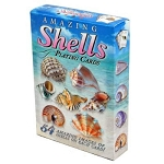 Amazing Sea Shells Playing Cards